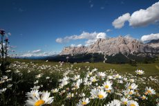 Nature & ladin culture in Alta Badia